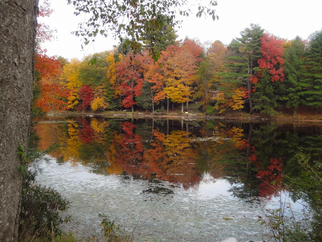 Catskills - Sullivan County, NY -- Smallwood Lake
